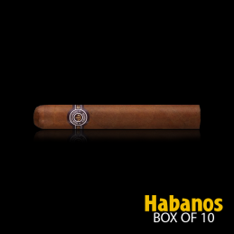 MONTECRISTO No. 5 BOX OF 10